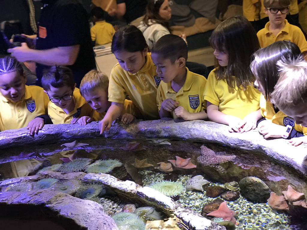 Another picture from our amazing field trip to the Long Beach Aquarium!