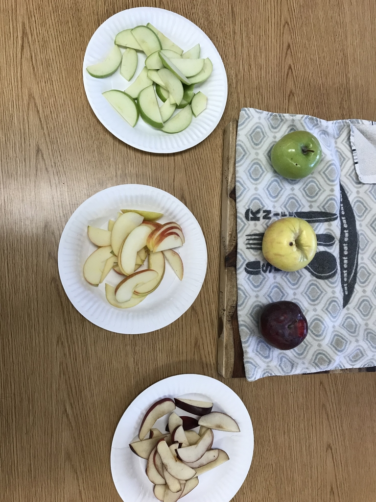 It's Apple Week in Kindergarten. So today we taste tested three different types of apples and then we graphed our results.