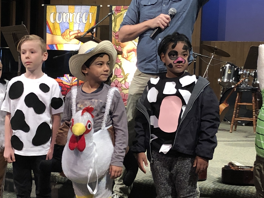 First grade chickens and cows #bcslions #halloween