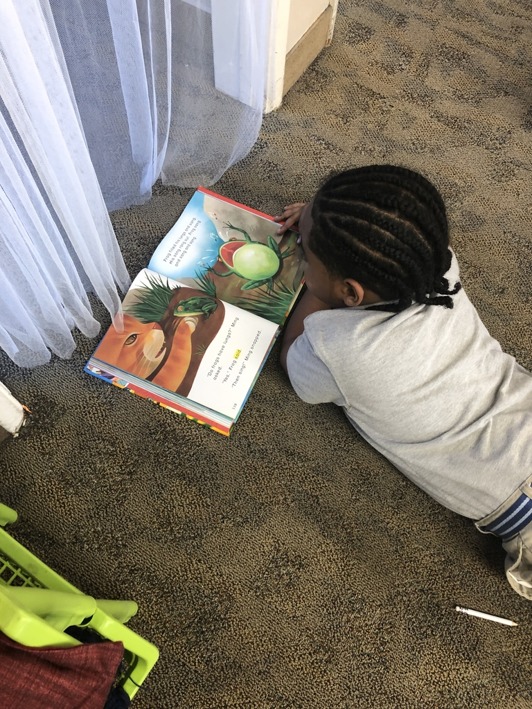 First graders are really getting the hang of reading...and loving it! #bethanylions #firsthgradereaders #daily5