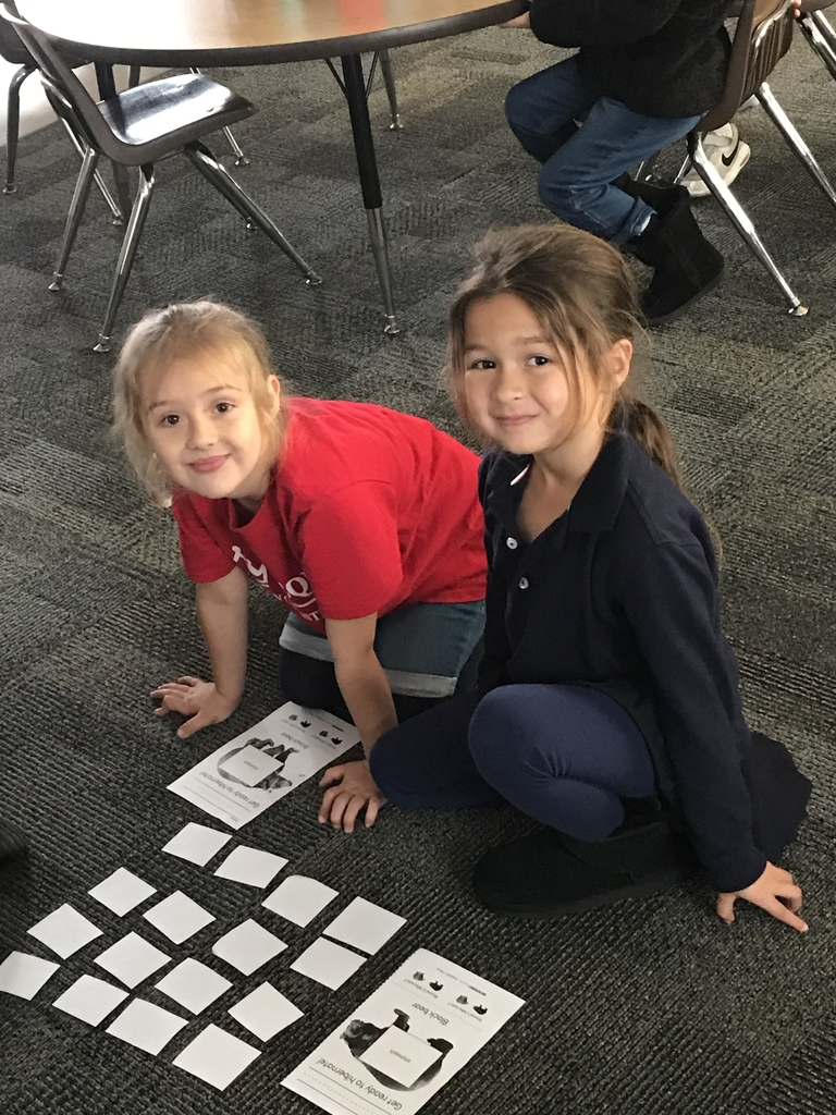 We learned all about hibernation in kindergarten! What a better way to learn than through a matching game. #bcslions #kindergarten